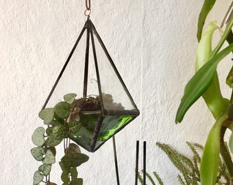 Glass house for plants, diff col, approx 13 cm hight