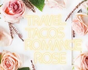 Travel, Tacos, Romance, Rose: Life Essentials Super Soft Cozy V-Neck Tee