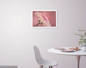Pink Illusion - Digital Print