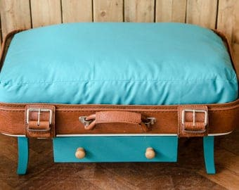 Pet Bed Suitcase with two Pillow Cases - Owl Print, Turquoise - raised, with drawer