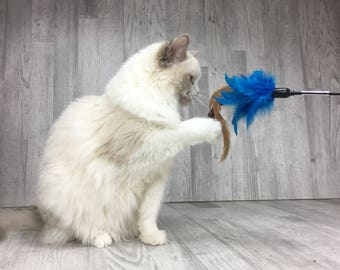 Cat toy | Rooster duster cat wand teaser toy | Interactive Cat Toy | Feather cat teaser | Blue cat toy | Best cat toy for indoor cats