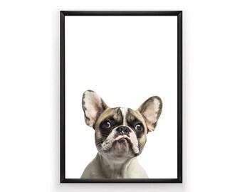 French Bulldog Print, Dog Prints, Bulldog Printable, Bulldog Print, Digital Prints, French Bulldog, Bulldog Wall Art, Instant Download,