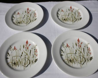 Queen Anne 'Nymph' set of four side plates  Bone China Made in England