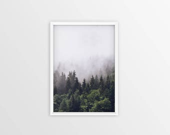 Forest print, forest art, trees, forest fog, nature photography, nature prints, Minimalist Print, Pillow print