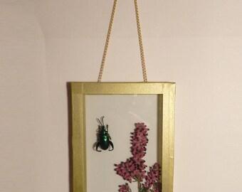 The Herbarium Anderson #3