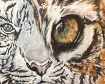 In the eye of Tiger