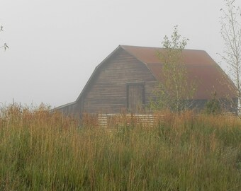 Colorado Art - Steamboat Barn in the fog