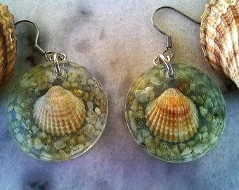 Handmade Seashell Earrings/Sea/Pebble/Resin