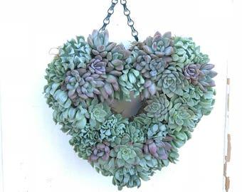 Succulent Heart Wreath / Door wreath, hanging wreath,