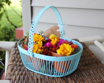 Repurposed Vintage Metal Aqua Basket Planter Centerpiece - Terra Cotta Pots Included