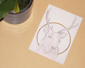 Golden Deer - ART PRINT