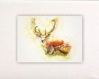 Deer - Watercolor prints, watercolor posters, nursery decor, nursery wall art, wall decor, wall prints | Tropparoba - 100% made in Italy