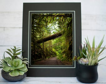 Othello Tunnels Trail Photography Print, Canadian Rockies Photography, 8x10 Print, PNW Photography
