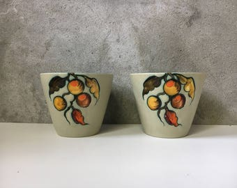 Vintage flora gouda holland flower pots flower pots aster 1950 's