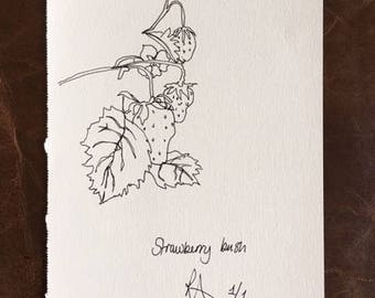 "Original Ink Art Drawing ""Starberries"""