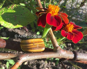 Golden Tigers Eye  Tumblestone (1pc)