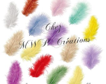Assortment of marabou feathers