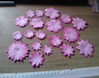 set of 19 paper flowers of pink fuchsia color gradient sizes