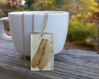 Brass-backed dragonfly wing necklace, insect jewelry, bug jewelry, dragonfly jewelry