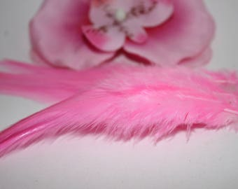 Set of 2 Rooster feathers colored Rose 9-15cm