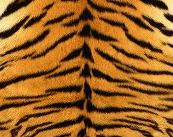 SEMI-rigid PLACEMAT, ORIGINAL design, WASHABLE and durable - wildlife - Tiger dress.