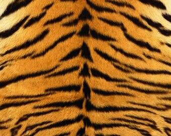 SEMI-rigid PLACEMAT, ORIGINAL design, WASHABLE and durable - wildlife - Tiger dress.