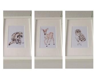 Nursery set of 3 whimsical woodland baby animals watercolour watercolor paintings prints racoon, deer, owl