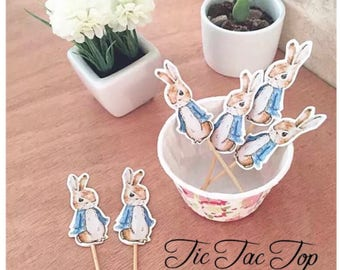 12x Peter Rabbit Party Food Cupcake Cake Topper Pick. Party Supplies Bunting Lolly Loot Bags