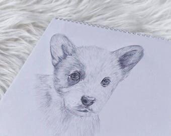 Custom Pet Portrait, Pet Portrait from Photo, A5 Pet Portrait, Pencil Pet Portrait