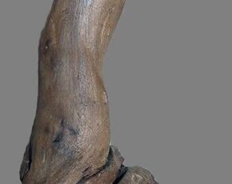 """Natural Driftwood """"Penguin"""" sculpture"""