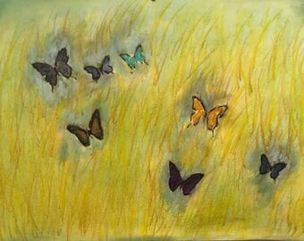 Yellow Wild Grass & Wild Butterflies