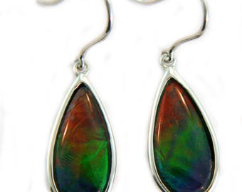 Three Color Pear shape Ammolite Earring set in Sterling Silver.