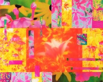Applique 011 16x20 – Psychedelic Garden Collage – Original Art Photography Mixed Media Collage Art