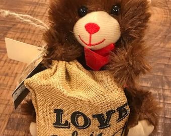 Teddy bear bag with Chocolates