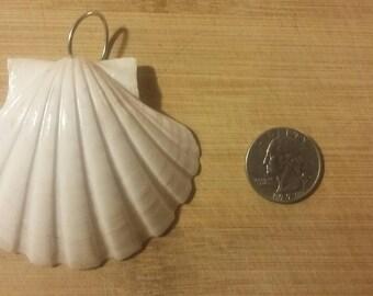 Real seashell pendant