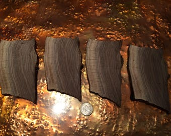 Black walnut slices with live edge.  Four slices