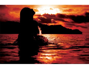 Landscape Photography - CR Mermaids, Nature Photography, Costa Rica, Sunset, Ocean, Prints, Canvas