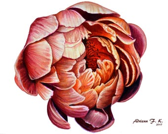 Flower- Original coloured pencil Ddrawing