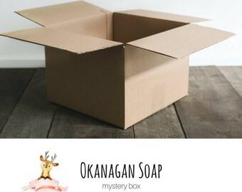 Mystery Box - Bath and Body Soap Gifts - Soap Mystery Box - Okanagan Handmade Soaps - All natural soap - Vegan - Organic - Pure Soaps