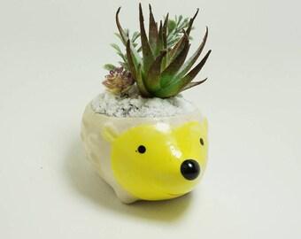 Baby Hedgehog Spiky Fake Succulent Arrangement