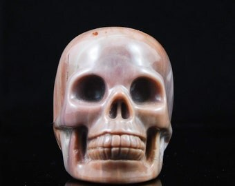 Crystal Skull Petrified Wood Skull