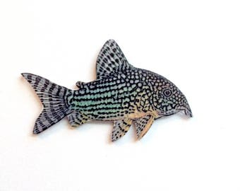 Handcrafted Plastic Corydoras Catfish Cory Your Choice of Pin Brooch, Necklace or Keyring
