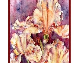 Watercolor Orange Irises Note Cards, Iris Prints, Boxed Set, Stocking Stuffers