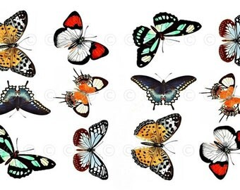 Butterfly Water-Slide Decals, Butterfly Party and Wedding Decals, Decorate Flame-less Candles, Soap, Glass, Home Decor, Furniture etc...