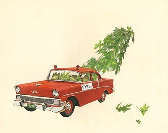 Special agents of the Plant Welfare League seize neglected botanical wonder.  Original collage by Vivienne Strauss.