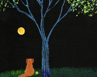 Golden Retriever Dog REFLECTION Limited Edition Art PRINT of Todd Young painting