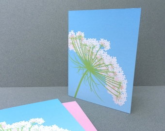 Queen Anne's Lace Notecards,  Blue White Flower Wildflower Spring Summer Nature Natural History