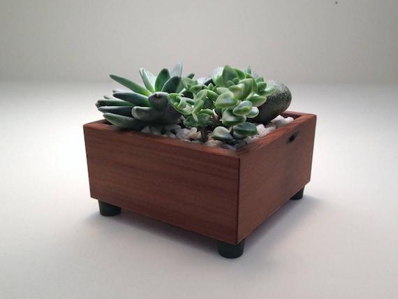 Succulent planter box square garden centerpiece