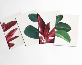 Plant Postcards With Envelopes, Leaf Art - Leaves
