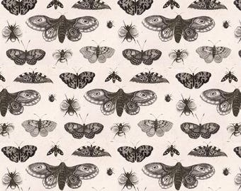 Vintage Moth Fabric - A Moth, Butterflies And Bees By Flyingfish - Moth Entomology Vintage Cotton Fabric By The Yard With Spoonflower